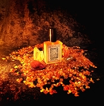 AMBER COEUR (EDP) 60 ml Perfume Spray - Pure glowing amber