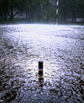 DURING THE RAIN PERFUME OIL 5 ml - Storm accord layering note - petrichor, soaked Earth, limestone, loam, clay and wet concrete
