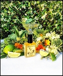 GIN FLOWER EAU DE PARFUM (EDP) 60 ml Perfume Spray - Osmanthus, Elderflower, Apricot, Vanilla, Juniper, Lime, Manuka Honey Accord (Vegan), Pear, Citron, Hawaiian Sandalwood