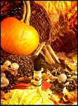 PUMPKIN SPICE LATTE PERFUME OIL 5 ml - Sweet Pumpkin, Cinnamon, Gingerbread Whipped Cream & A Drop of Nutmeg - *LAST YEAR for this!*