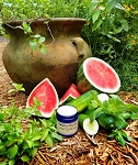WATERMELON CUCUMBER MINT WHIPPED SOAP